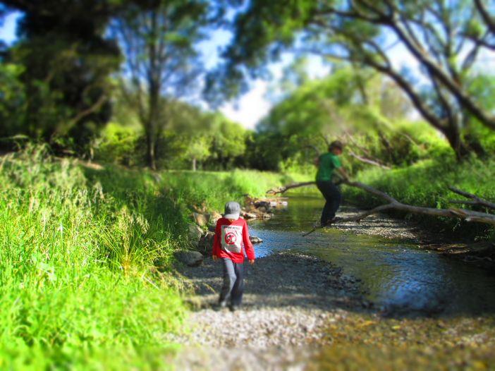 creek_2
