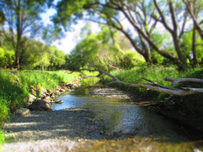 creek_4