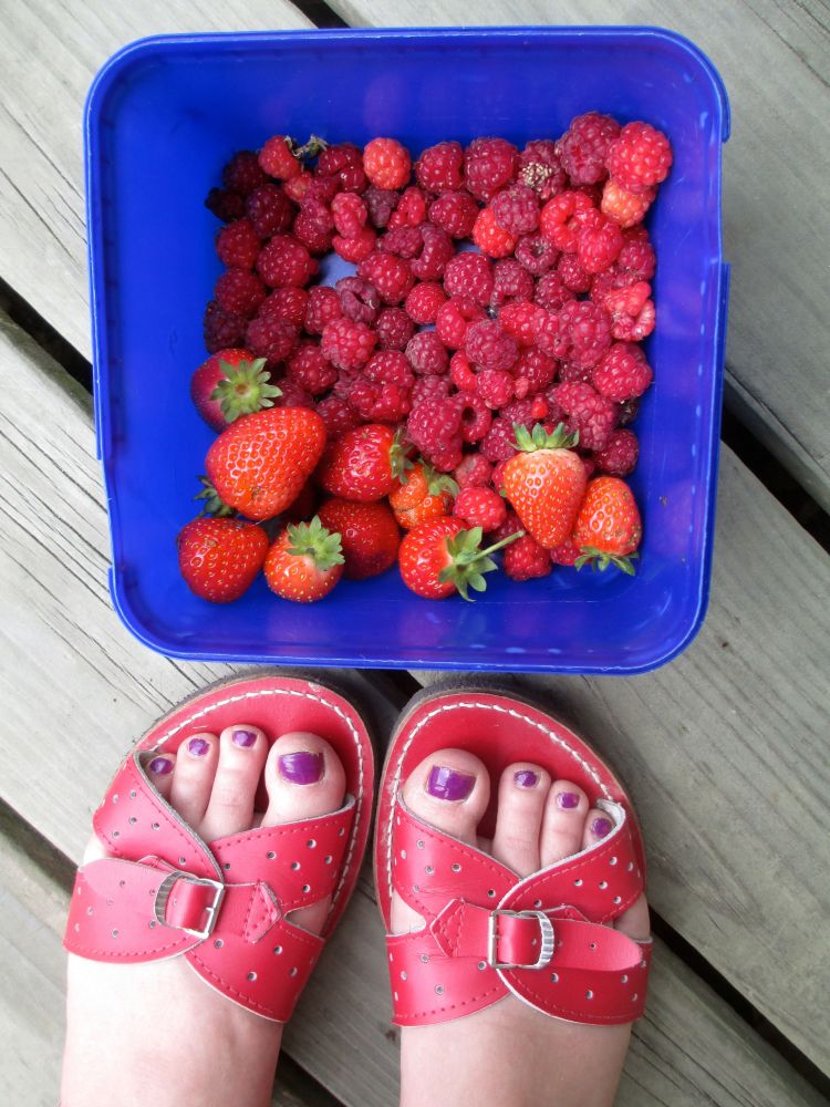 raspberries_1